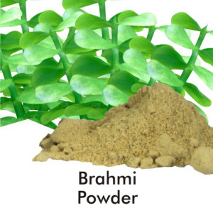 BRAHMI POWDER 500gm