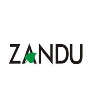 Abhayarishta 450ml Zandu